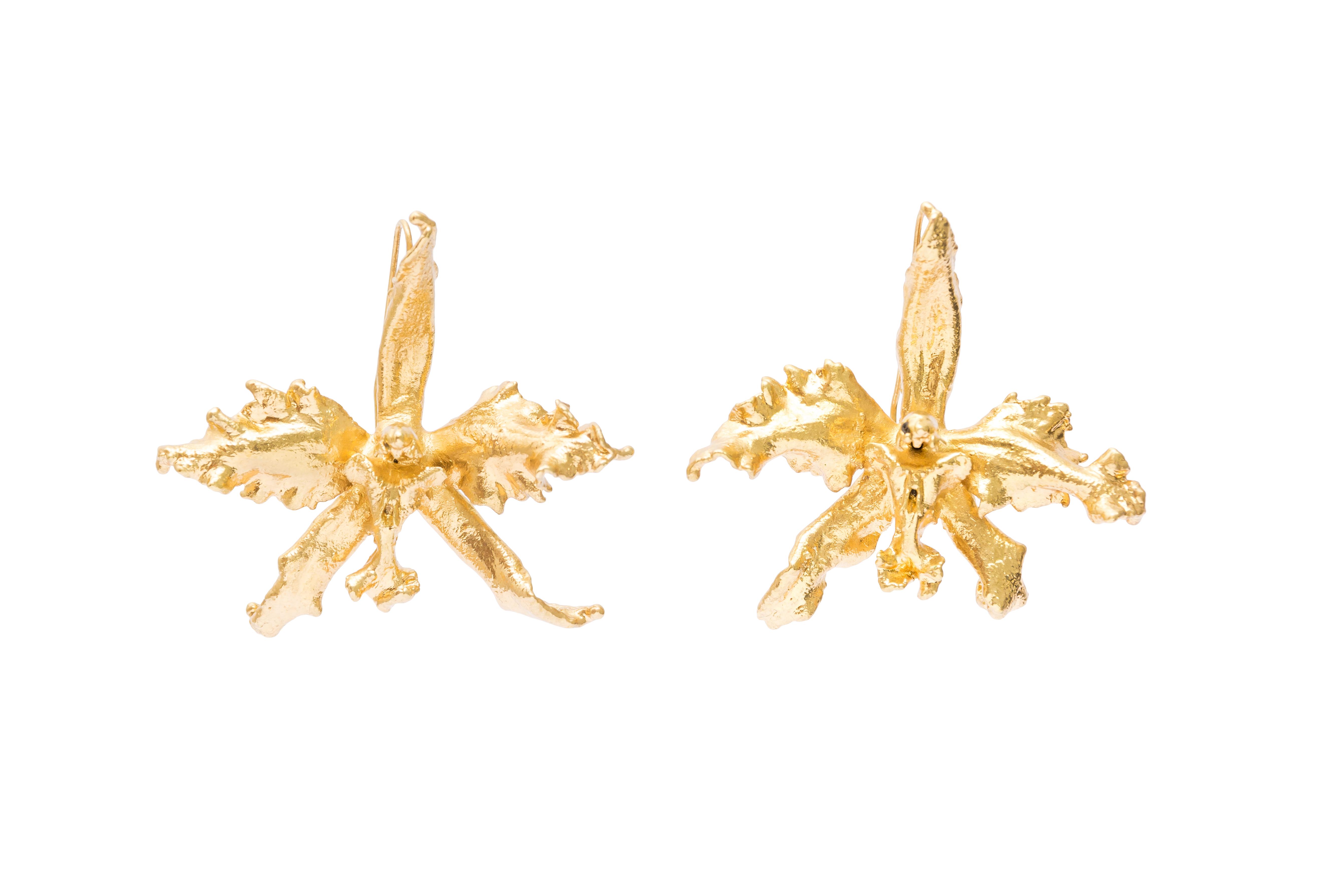 Aretes orquidea