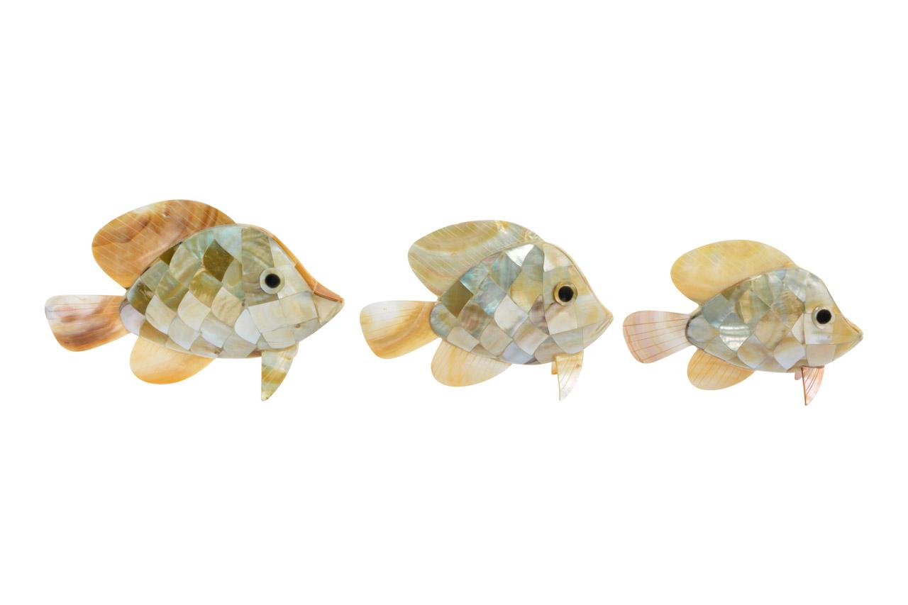 Set de Pescados decorativos nacar