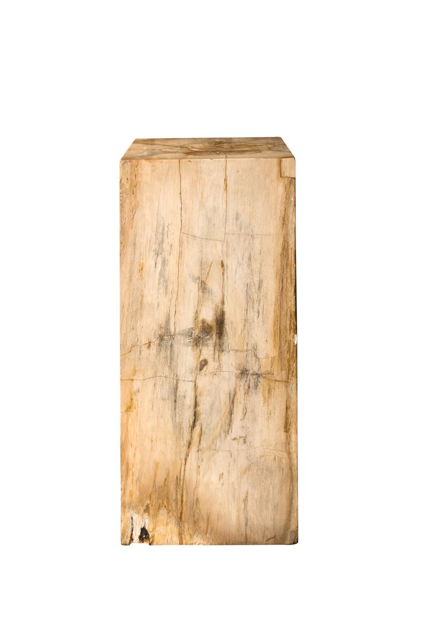 Columna de madera fozilizada