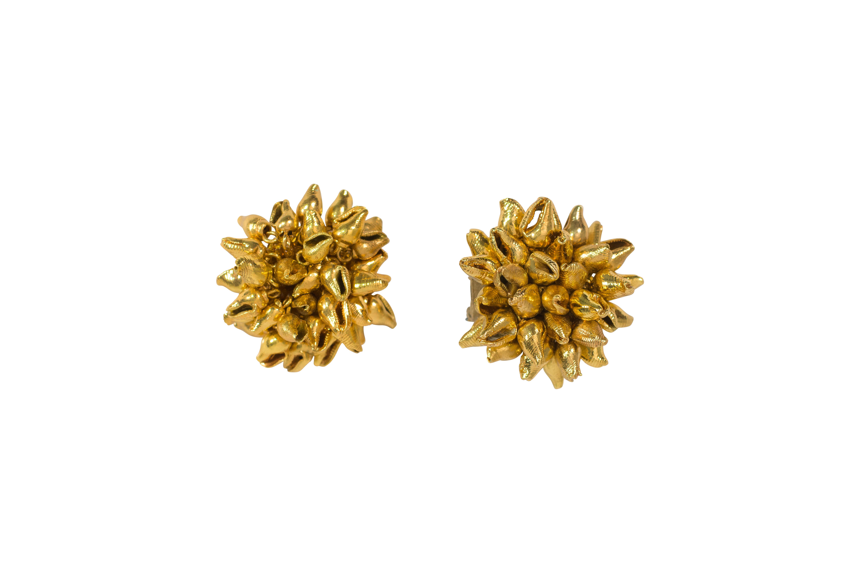 Golden Seashell Earrings
