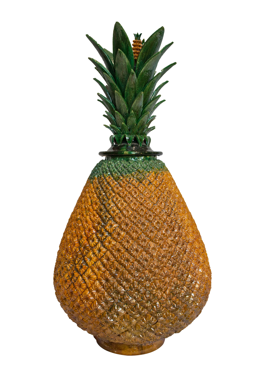 Ornamental Pineapple Michoacan, Yellow