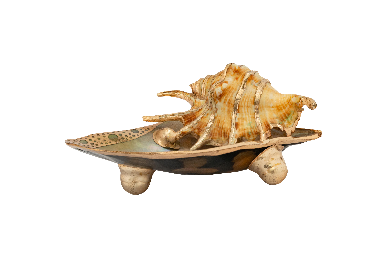 Jabonera caracol natural