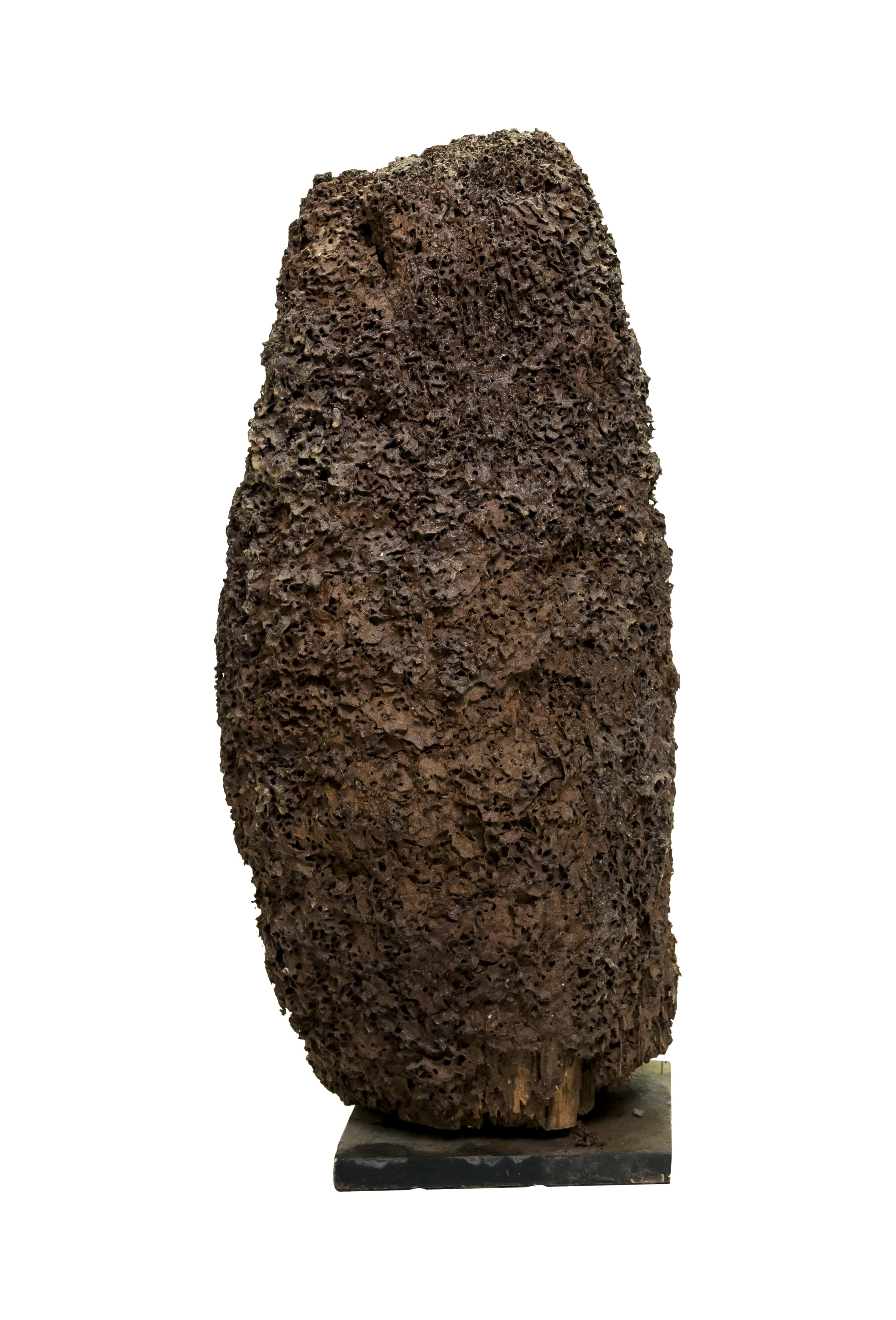 Escultura decorativa natural de termitas