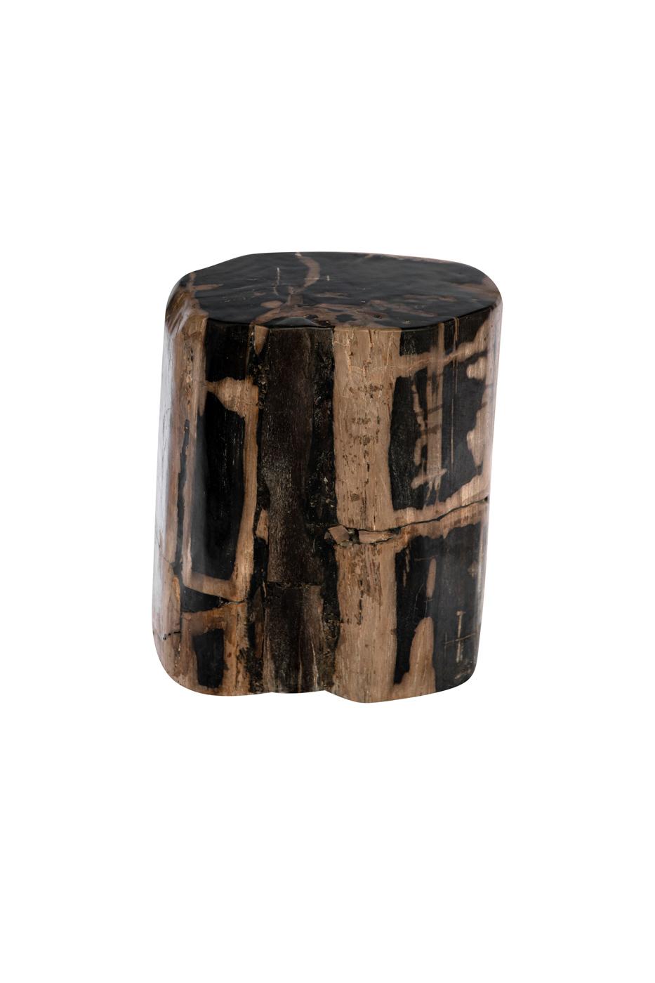 Black-natural fossilized wood log