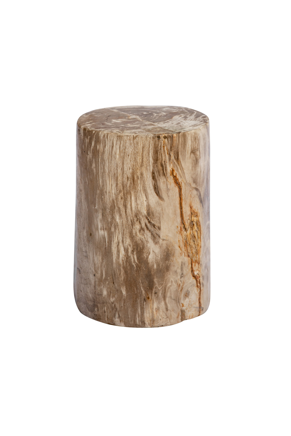 Natural fossilized wood log