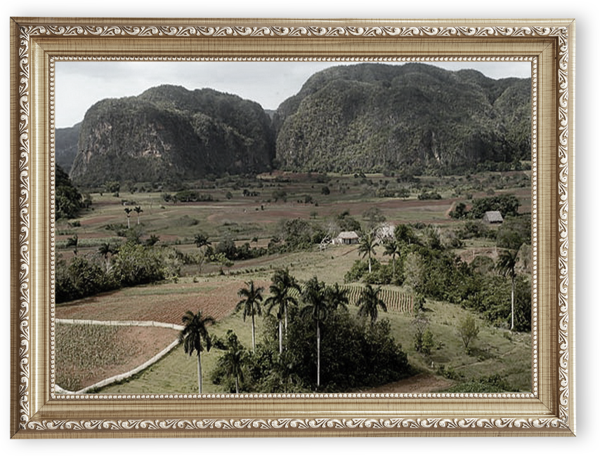 Vuelta Abajo region of Pinar del Rio, Cuba