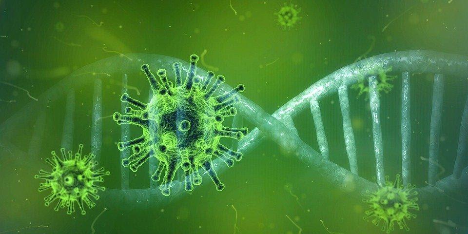 Coronavírus, Corona Vírus, Covid-19, Vírus, Pandemia