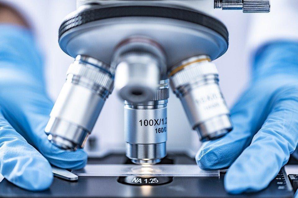 Análise, Copo, Bioquímica, Biologia, Biotecnologia