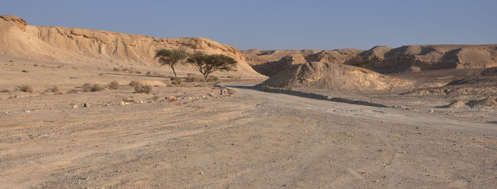 ערבה - מדבר - יואל שתרוג - אדמה יוצרת - yoel sitruk