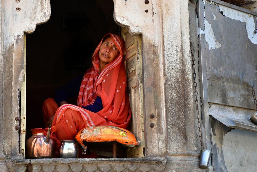 הודו – ג'איפור - העיר הוורודה - יואל שתרוג - אדמה יוצרת