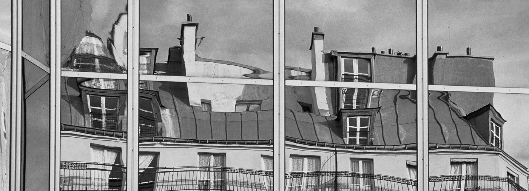 פריז - עלי שלכת - paris - יואל שתרוג - אדמה יוצרת - yoel sitruk