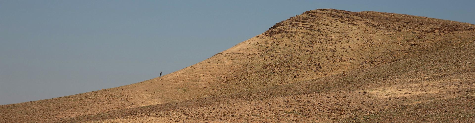 יואל שתרוג - אדמה יוצרת - yoel sitruk -המדבר מדבר - נגב - מדבר