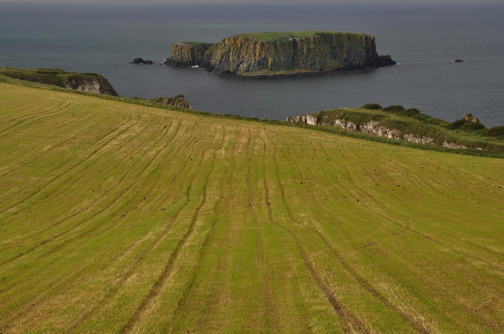 אי ירוק בים - אירלנד - יואל שתרוג - אדמה יוצרת - yoel sitruk