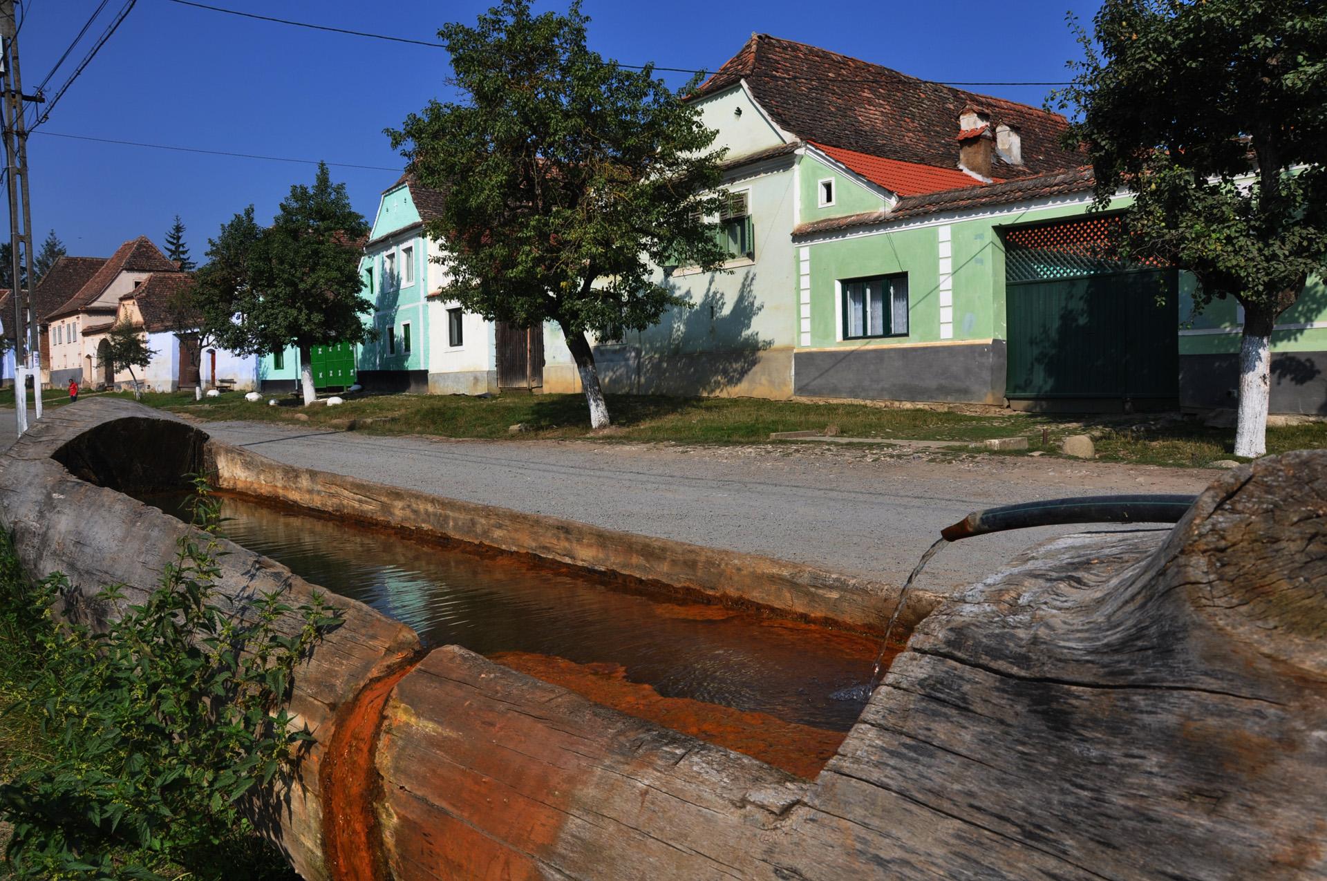 רומניה בעקבות דקרקולה - România- יואל שתרוג - אדמה יוצרת  - yoel sitruk