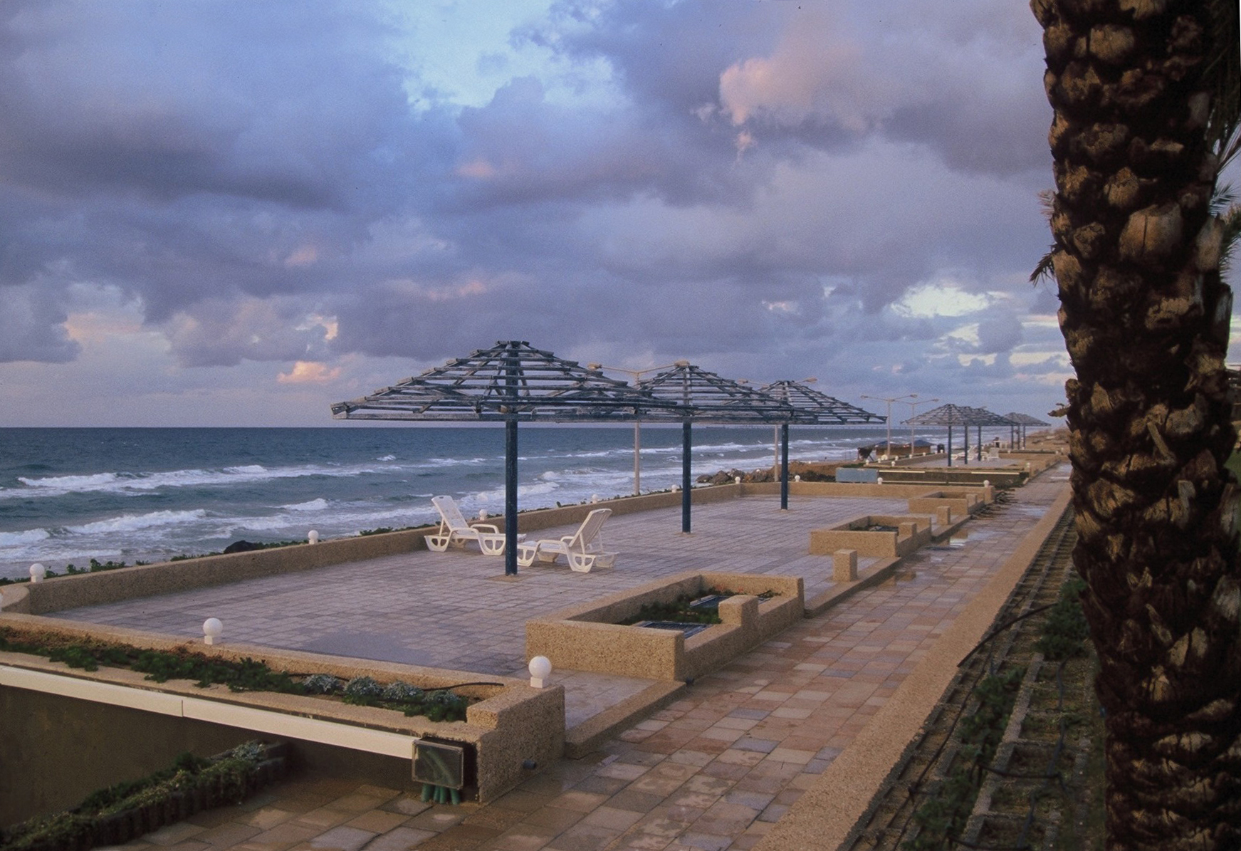 עזה 2000- יואל שתרוג - אדמה יוצרת - gaza 2000- yoel sitruk