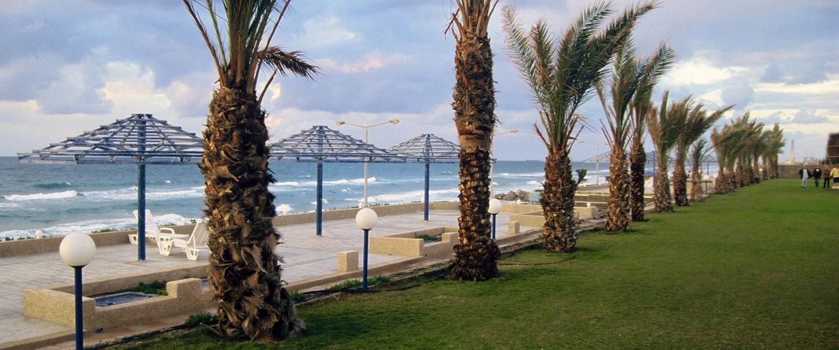 חוף עזה 2000 - gaza 2000- yoel sitruk - יואל שתרוג - אדמה יוצרת
