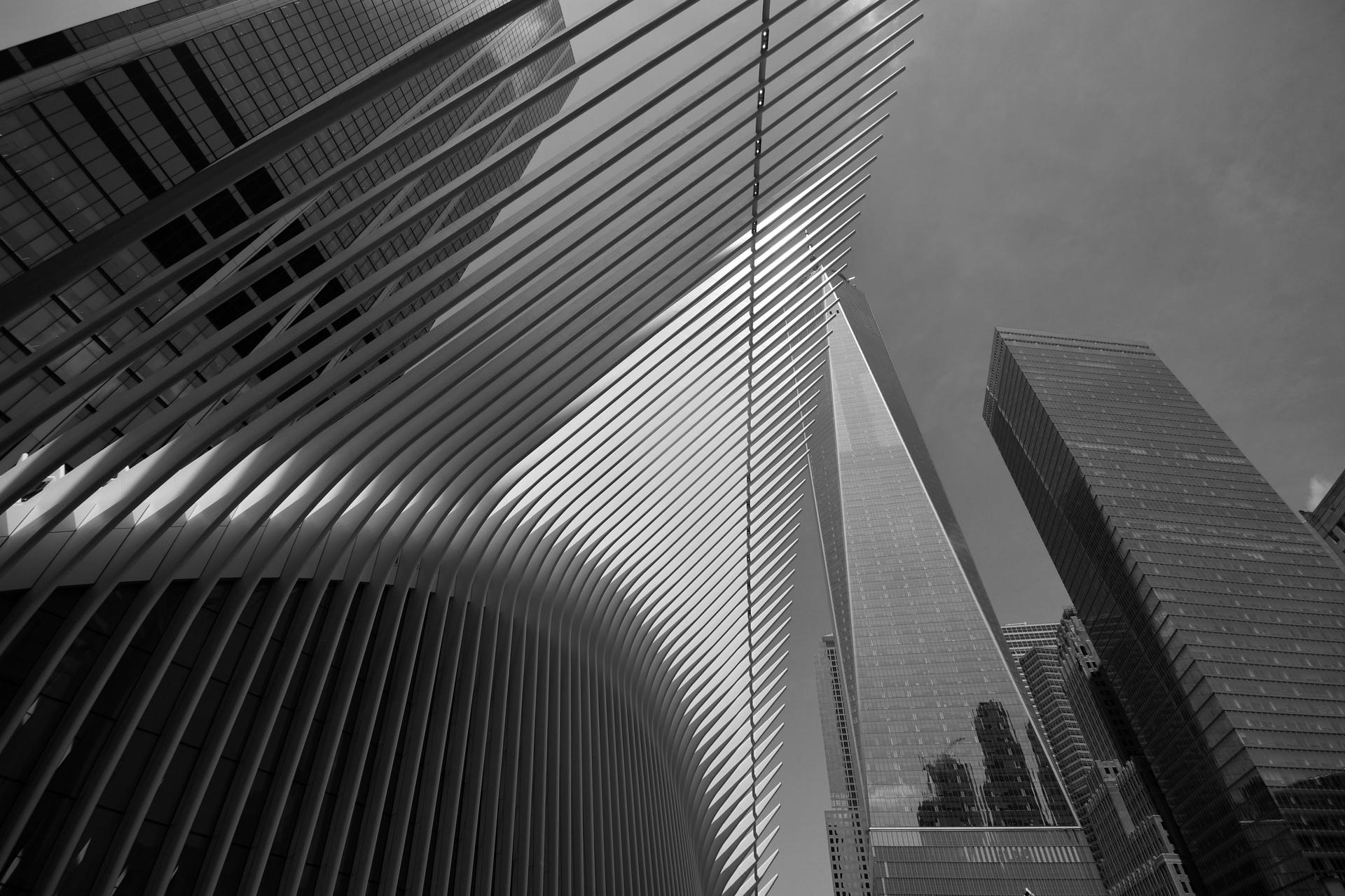פלדה - בטון - ניו יורק - מנהטן - יואל שתרוג - אדמה יוצרת