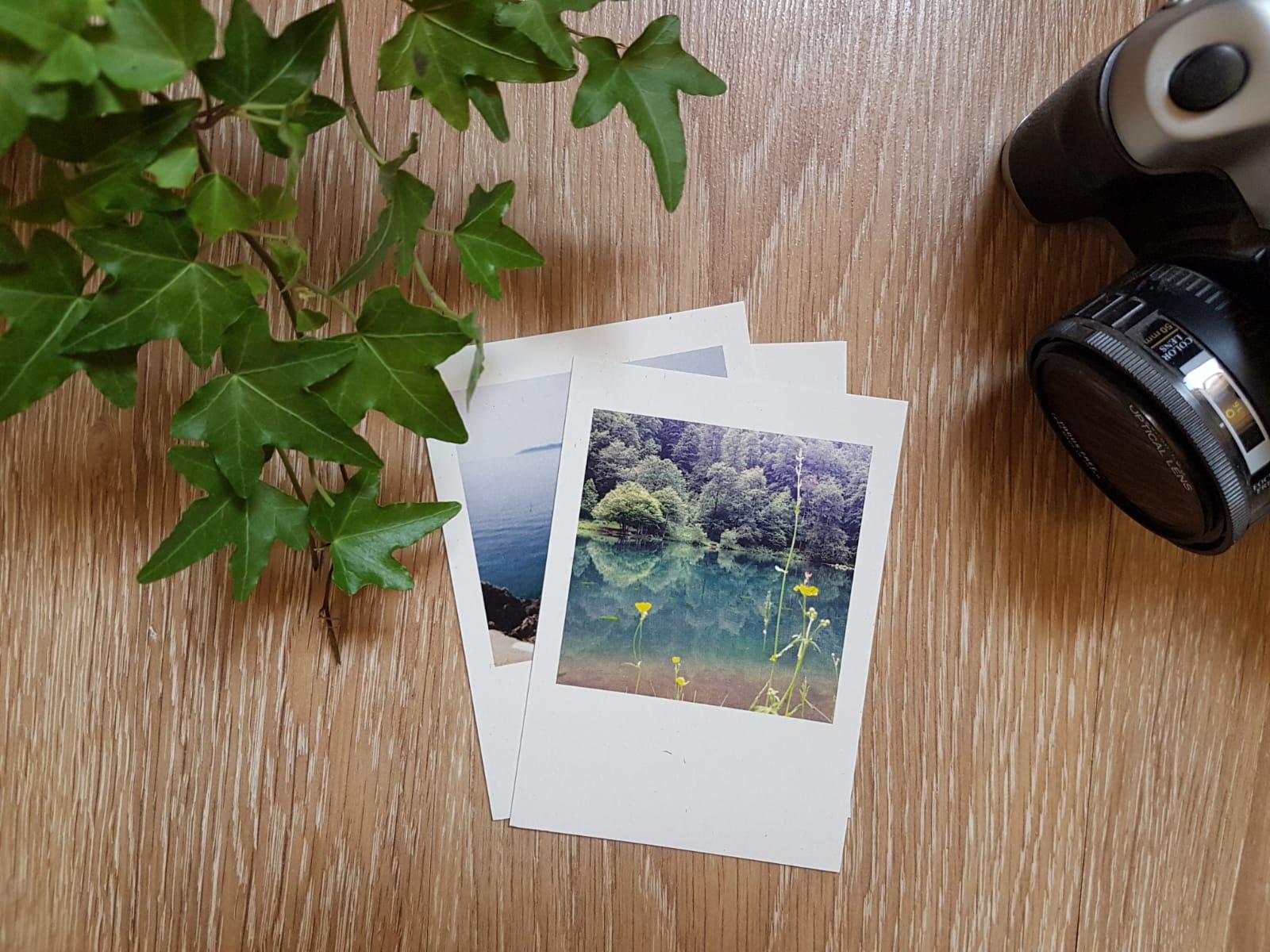 גלויות מעוצבות, כרטיסי ברכה מעוצבים, מתנה מקורית, מצלמה ופרחים