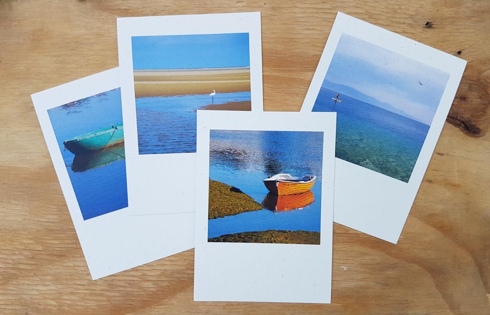 כרטיסי ברכה, שנה טובה, גלויות, תמונה גלויה, ניצן שתרוג, גלויות מעוצבות
