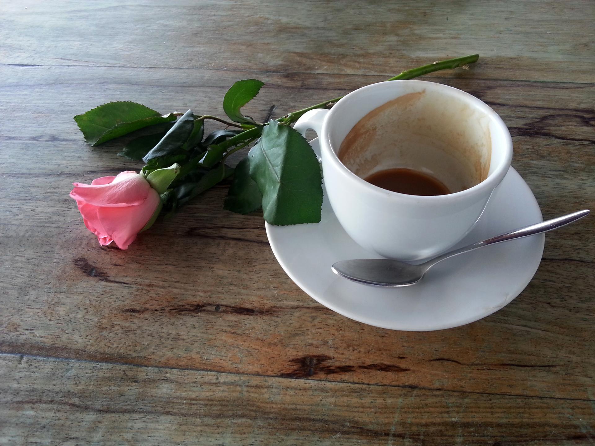 קפה דה פלור - יואל שתרוג - אדמה יוצרת - yoel sitruk