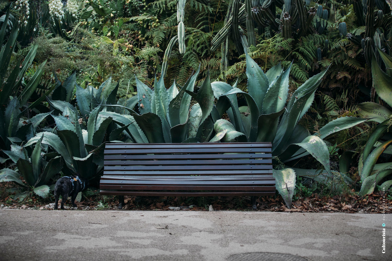 Park bench at the Jardim da Estrela park in Lisbon Portugal