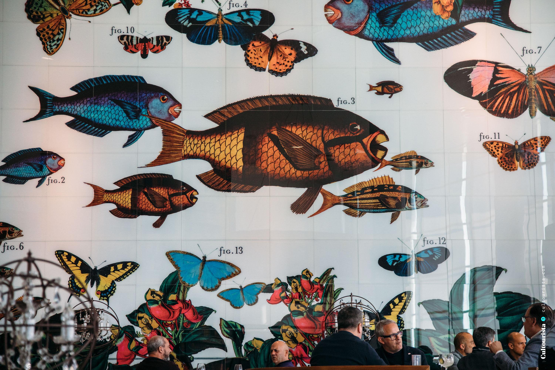 Cultourista article main image