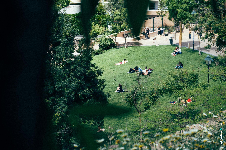 Cultourista article image