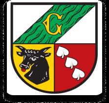 Grünenbach App Icon