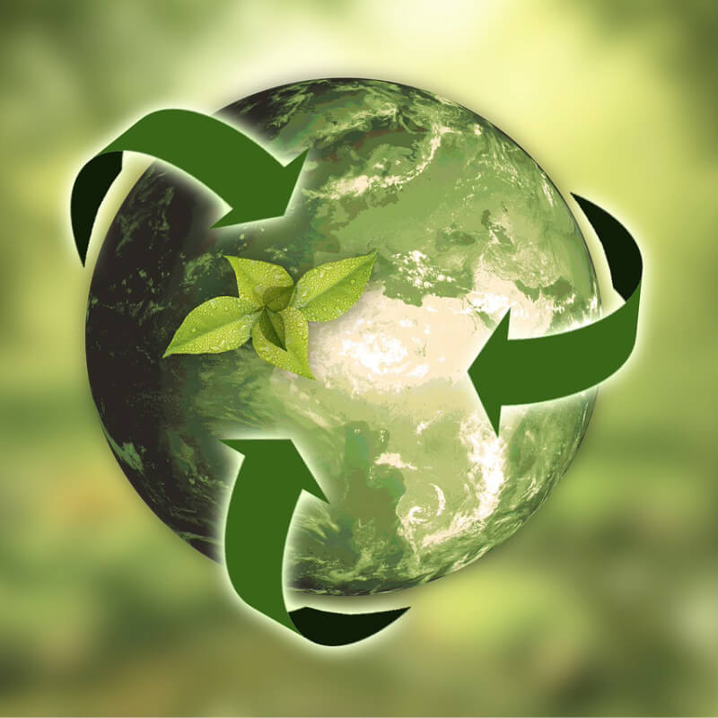 8 Easy Steps to a More Sustainable Home