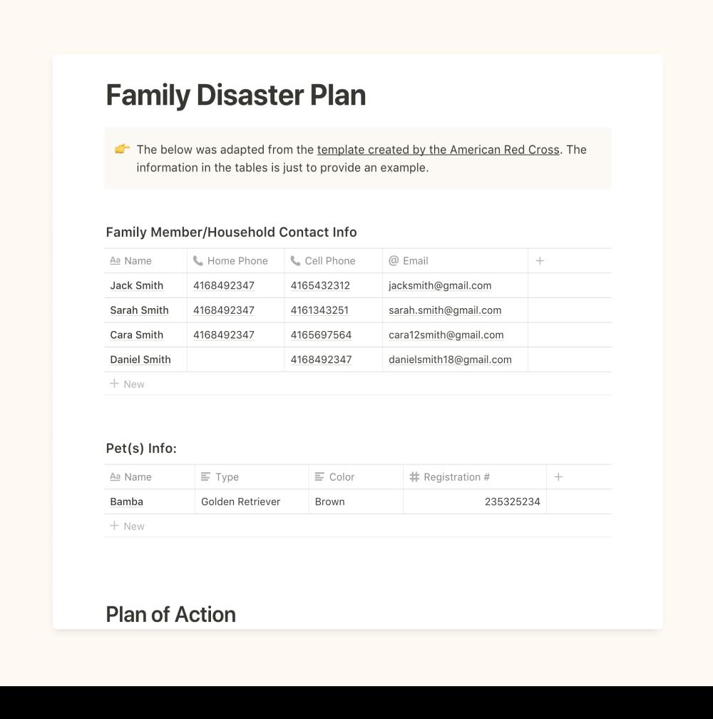 Disaster Prep Plan