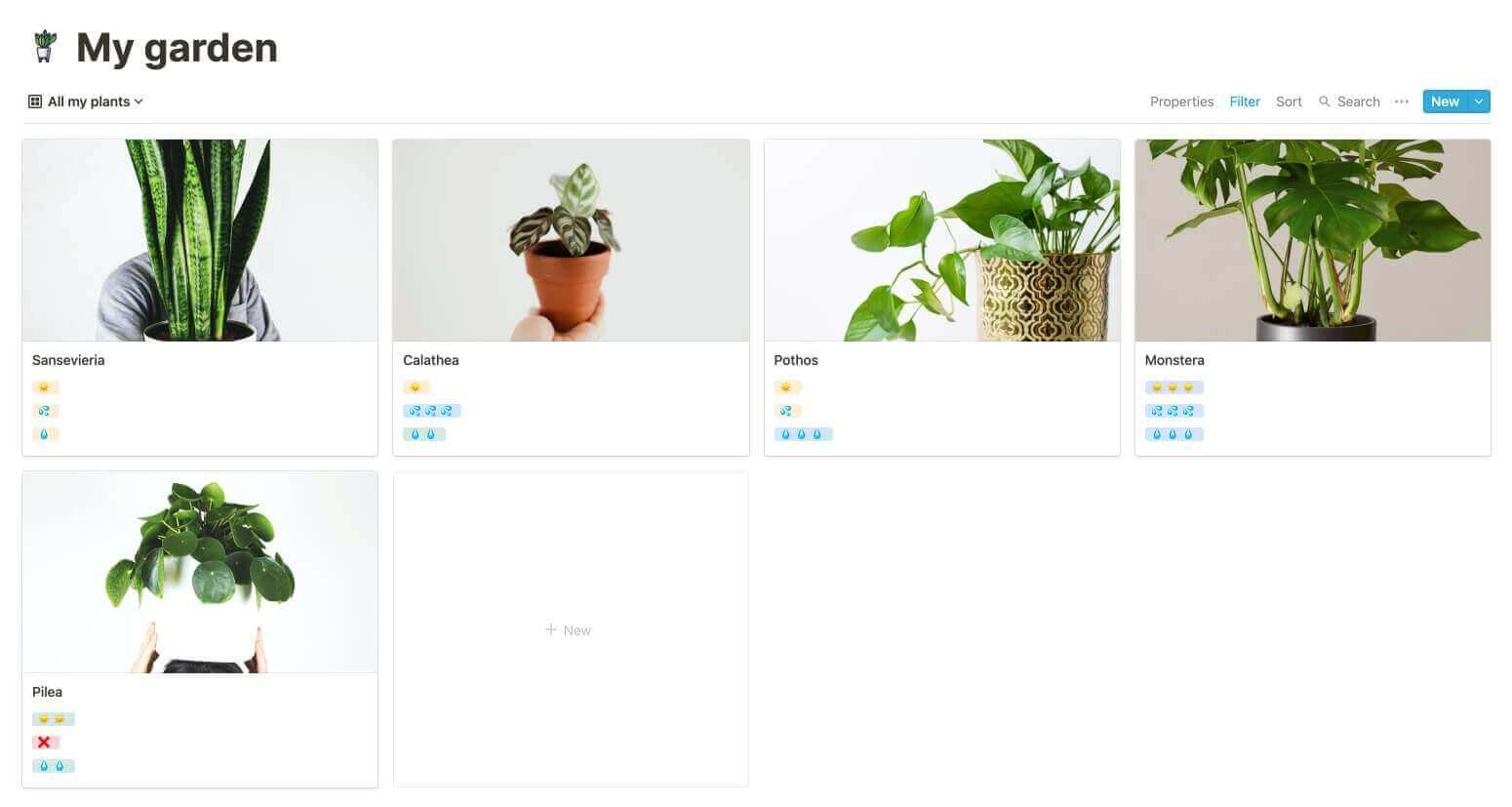 Notion Plants Manager