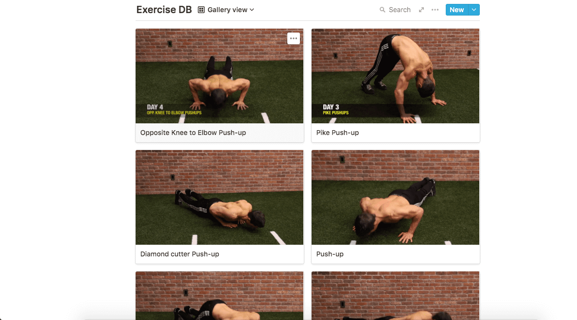 22 day Push-up challenge template