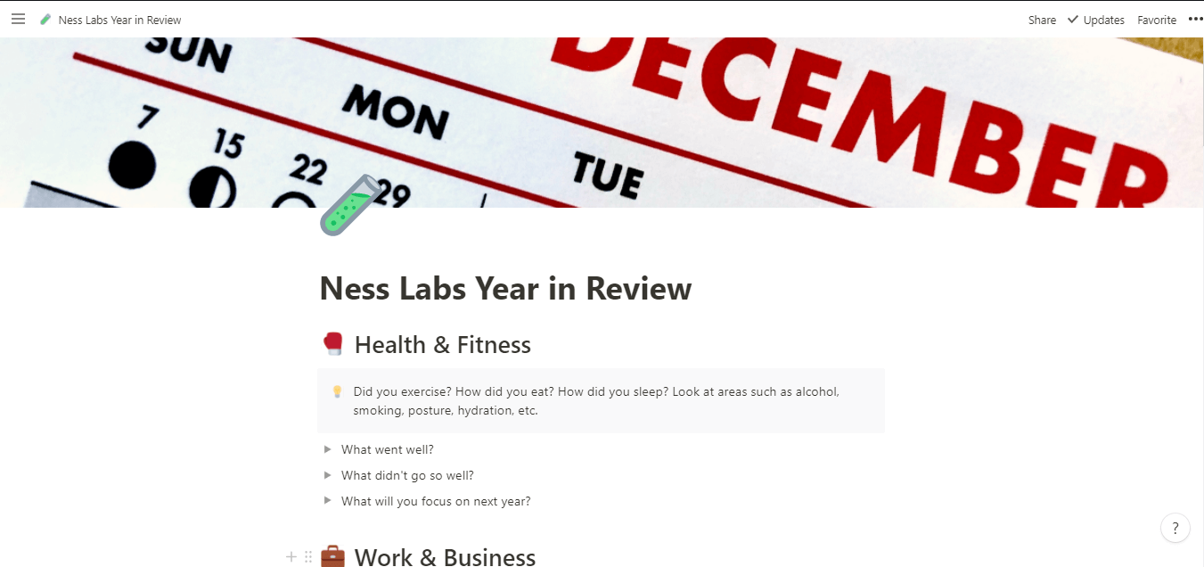 Ness Lab's Year in Review Notion Template