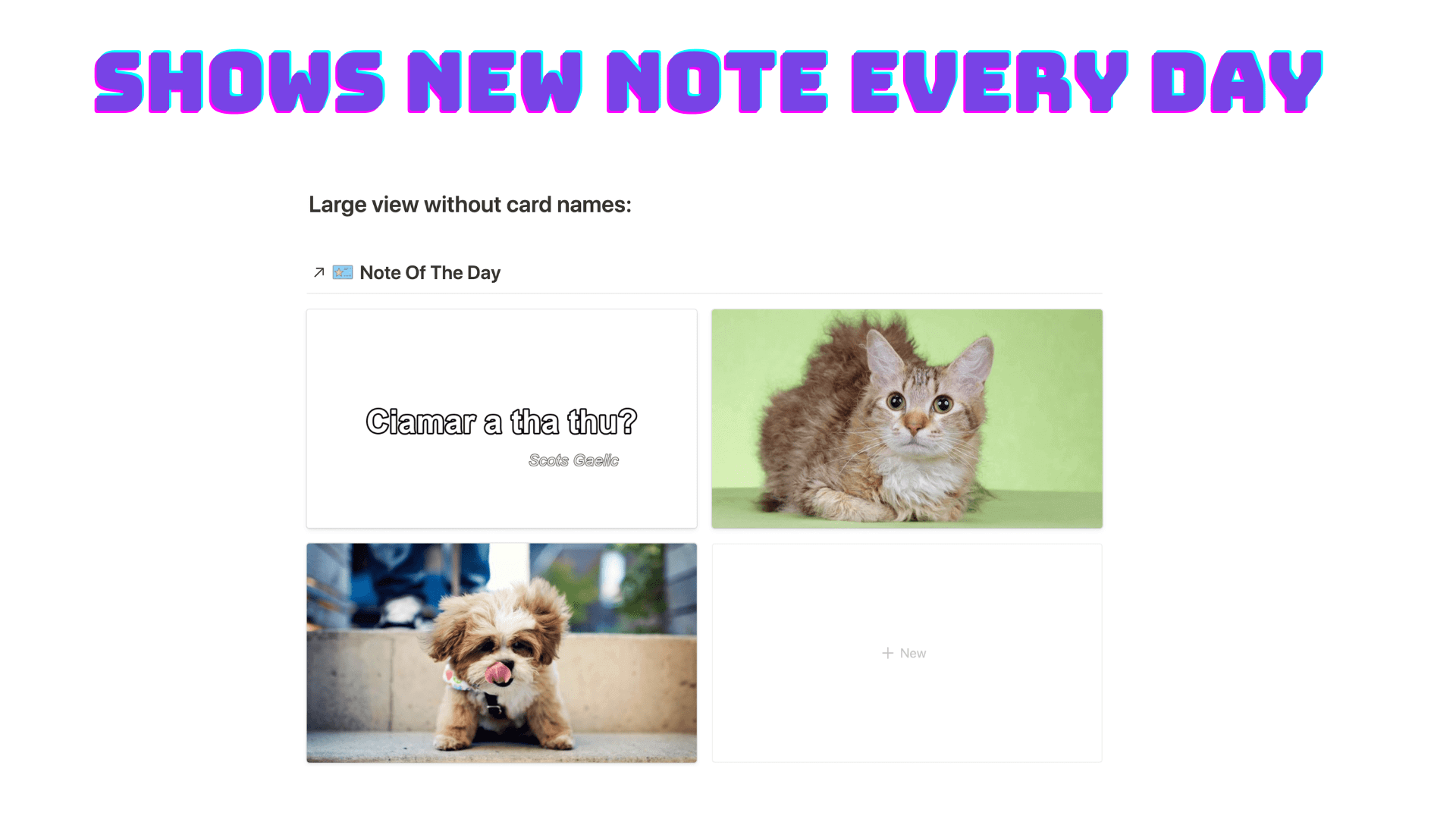 Note a Day - Free Notion Template