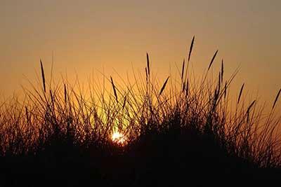 Sleep disorder sun setting