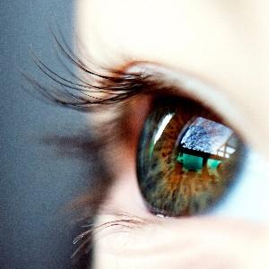 Savoir observer chaque comportement.