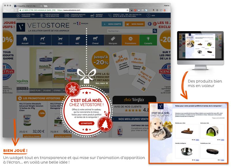 Opération marketing Noël Vetostore