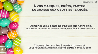 chasse aux oeufs site internet animation