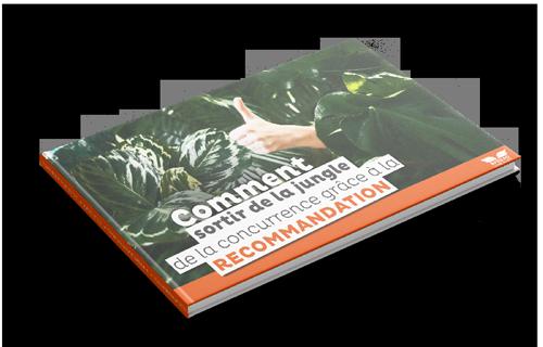 livre blanc marketing recommandation client