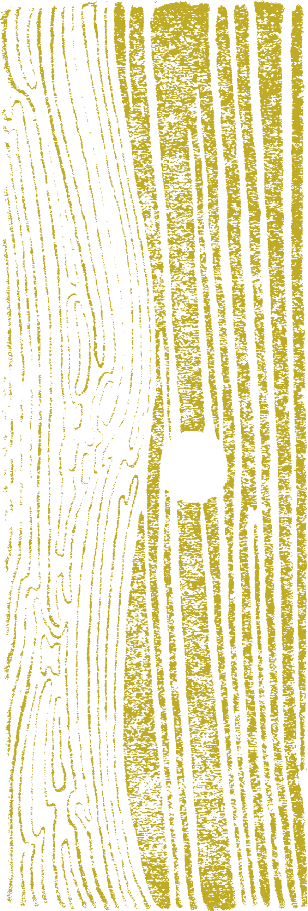 "Yellow ""blanding art"" background for photo"