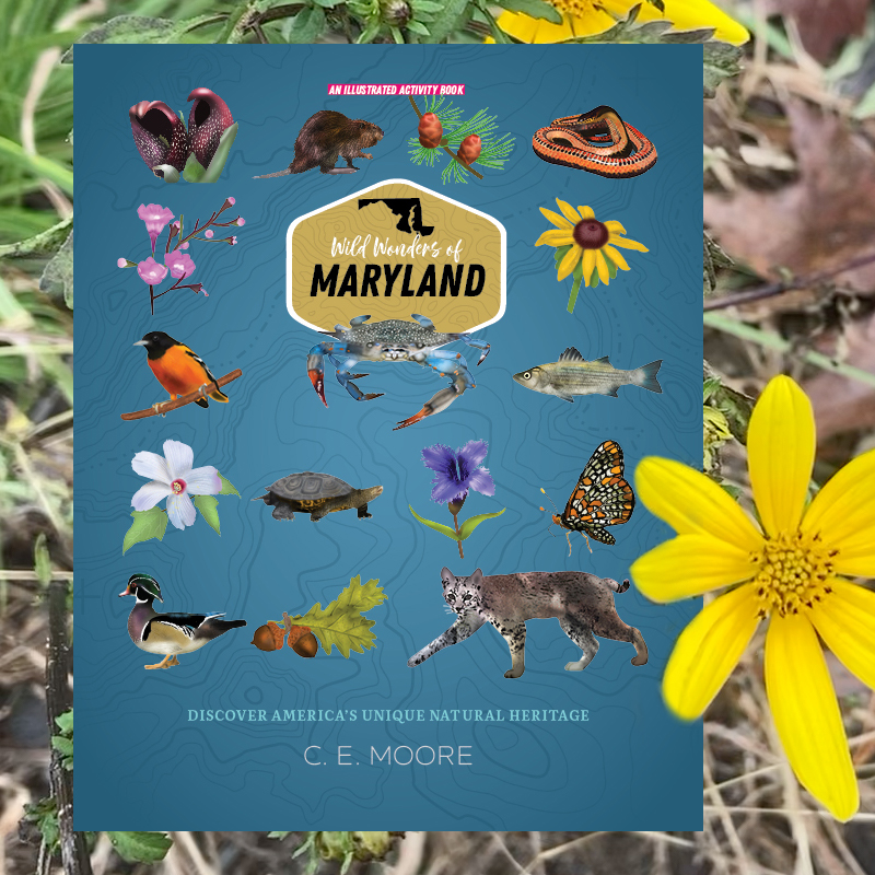 The cover of the Wild Wonders of Maryland book shows a grid of plants and animals, and  is set against a backdrop of leaves and yellow flowers.