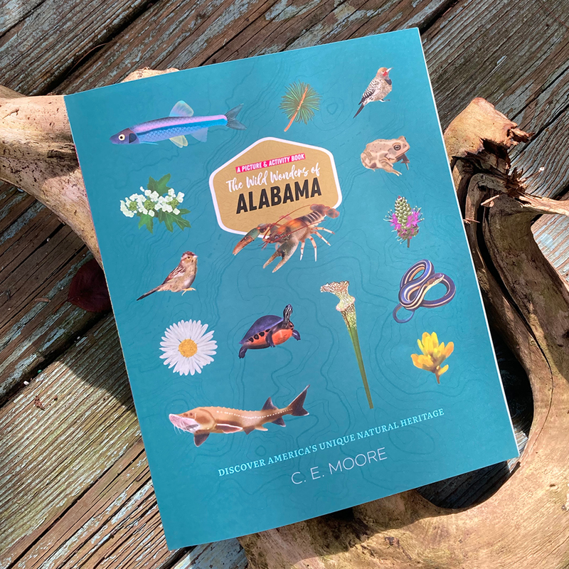 The Wild Wonders of Alabama book lays on top of a piece of driftwood and weathered wood flooring.