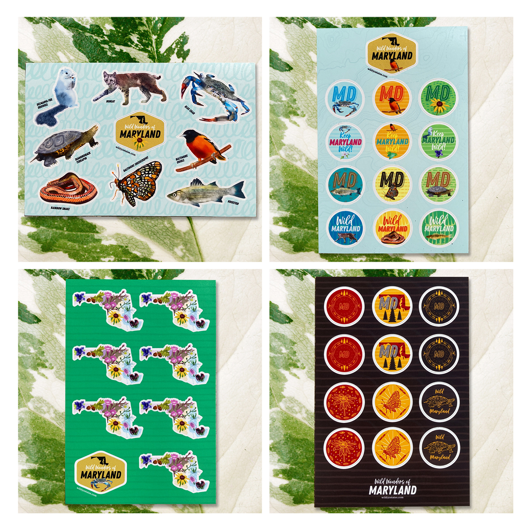 Thumbnails of 4 sticker sheets depict a few plants and animals of Maryland, each laid on top of a green floral background