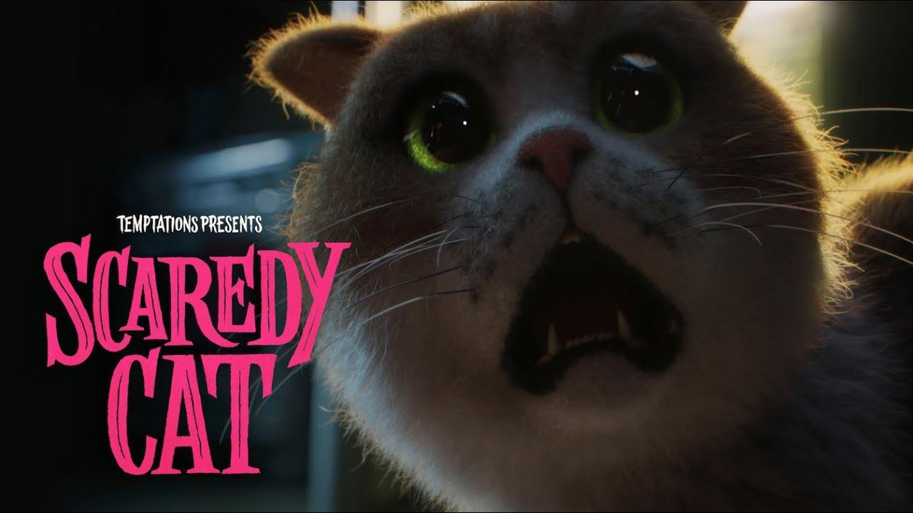 Scaredy Cat the Movie