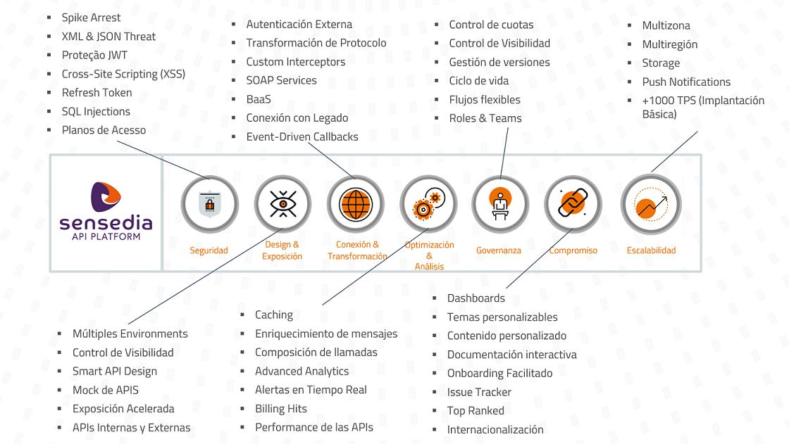 API Management Platform
