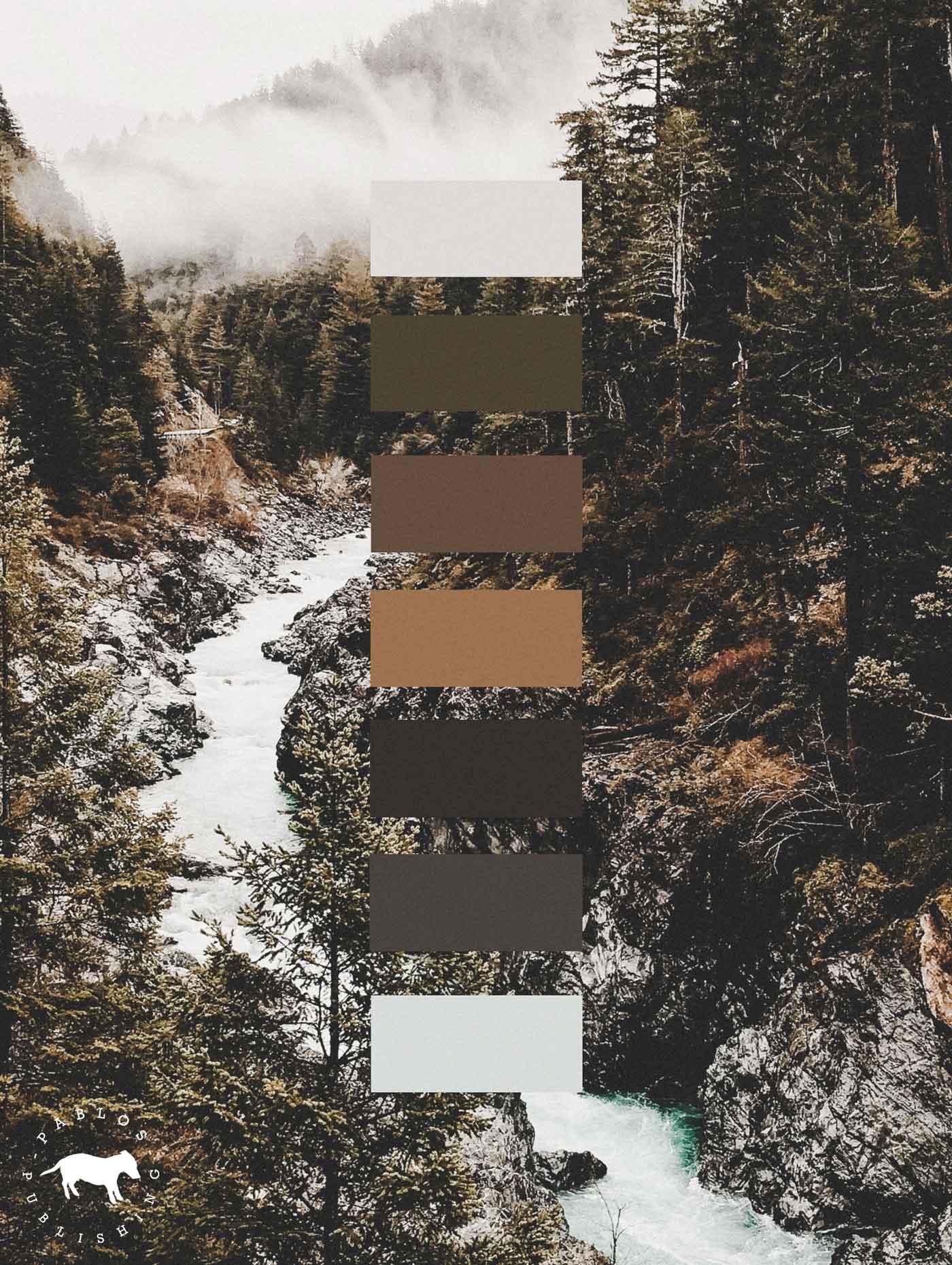 Farbpalette für Branding Projekt für Schweizer Verlag