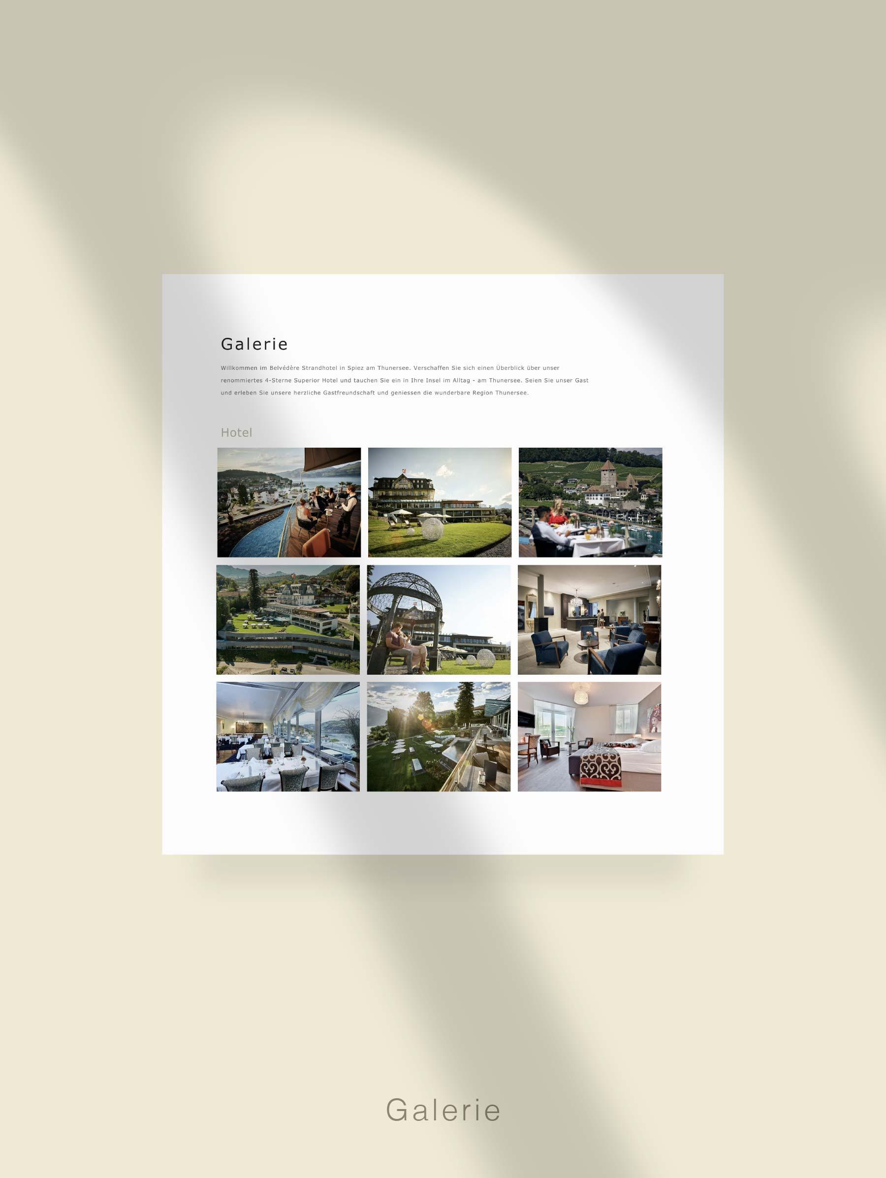 Module Gallery - Website development for Hotel Switzerland