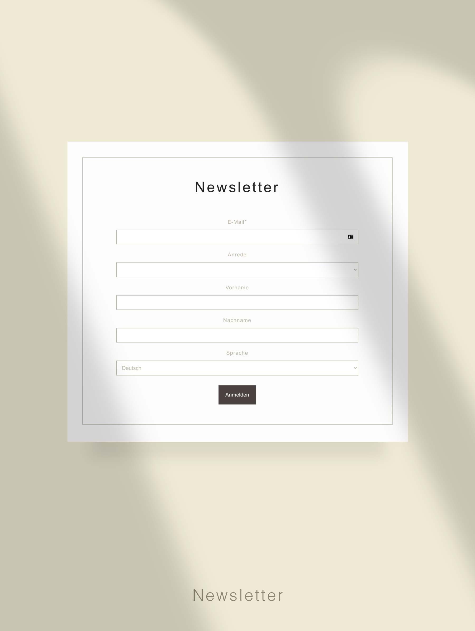 Newsletter subscription - Website development for Hotel Switzerland