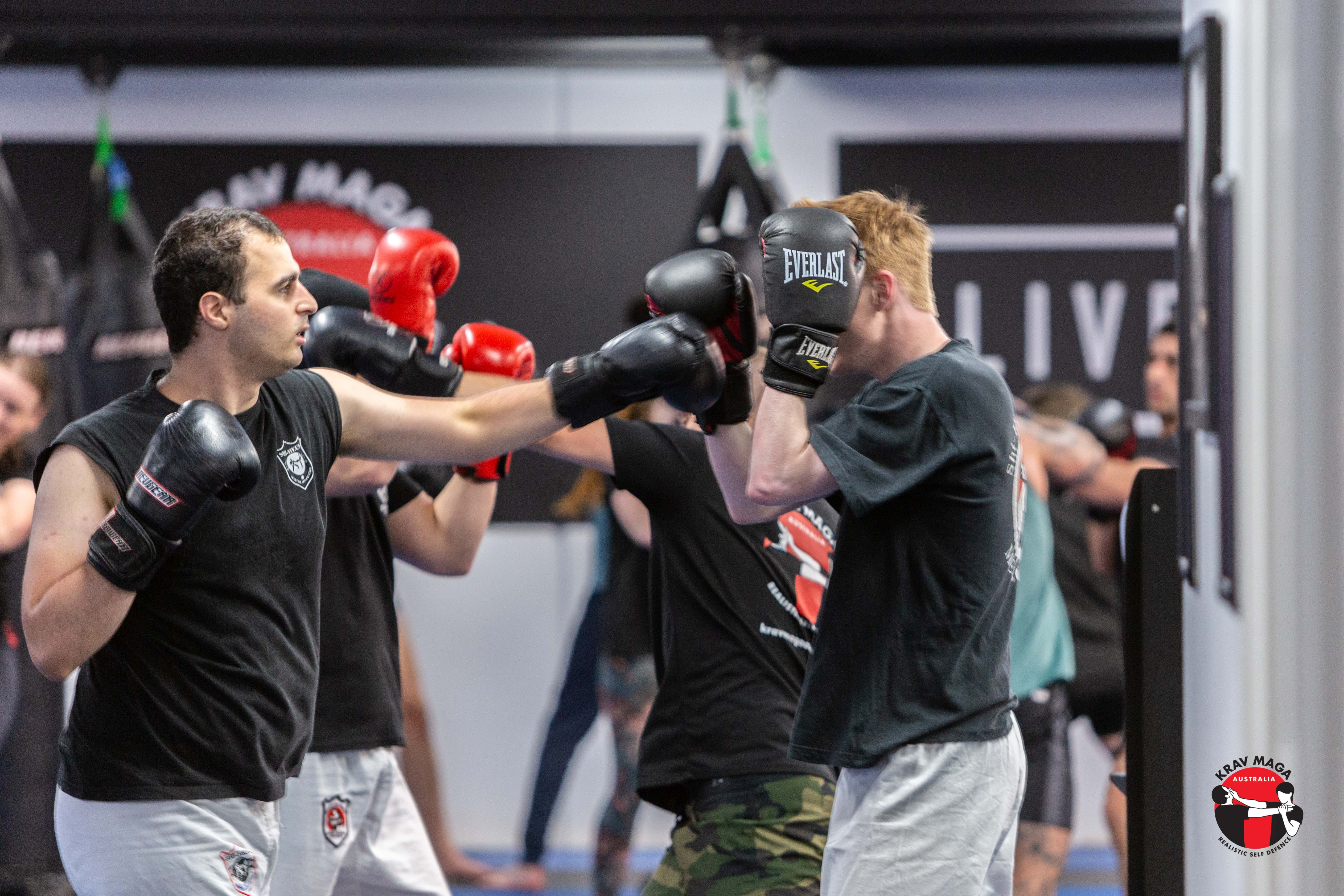 Sparring Image