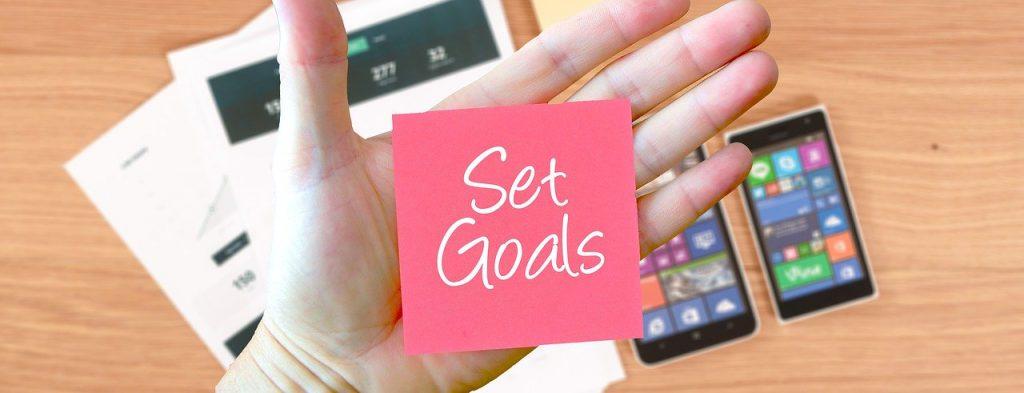 Set Goals for your Business Survey